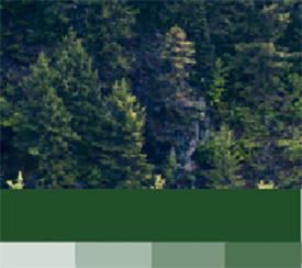 Lisävärit - metsän vihreä
