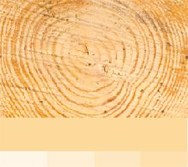 Lisävärit - vaalea puu