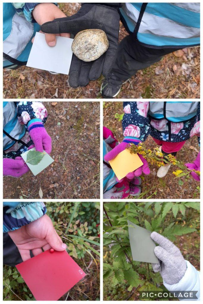 Kailaan päiväkodin esikoululaiset etsivät eri värejä luonnosta.